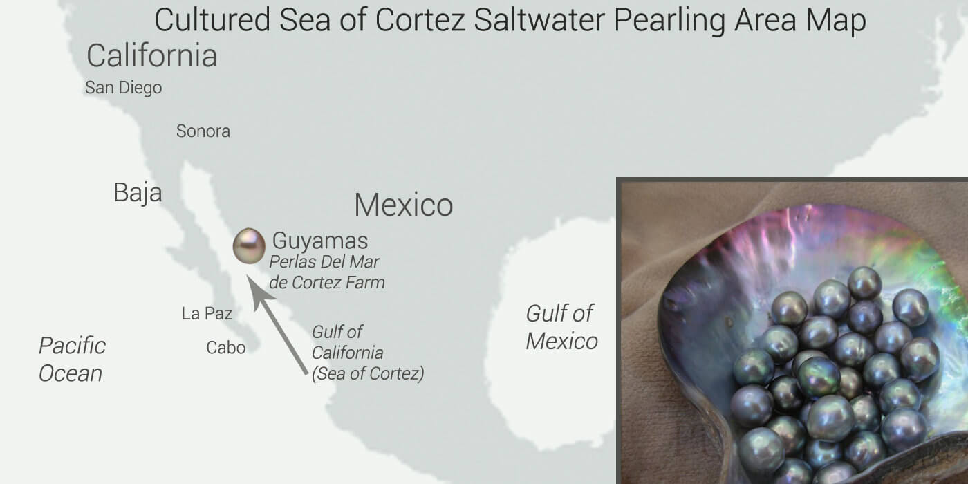 Cortez Pearl